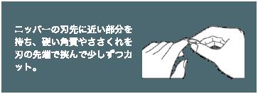 ニッパーの刃先に近い部分を持ち、硬い角質やささくれを刃の先端で挟んで少しずつカット。